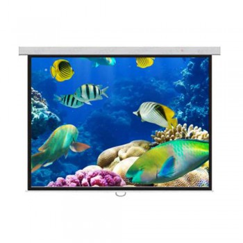 DP Screen Projector Screen - Wall Screen - Matte White - DP-WL-10 - Screen Ratio 10' x 10' - Screen Size 3048 x 3048mm